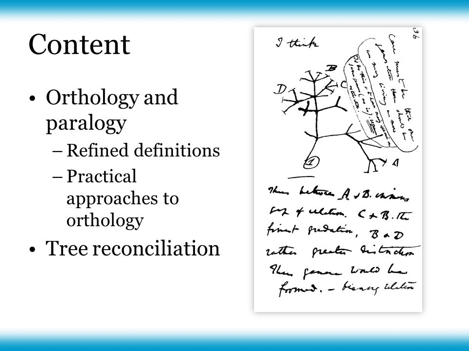 Definitions for evolutionary genomics