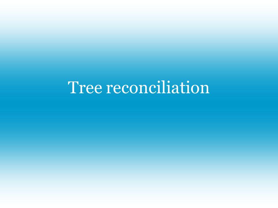 Tree reconciliation