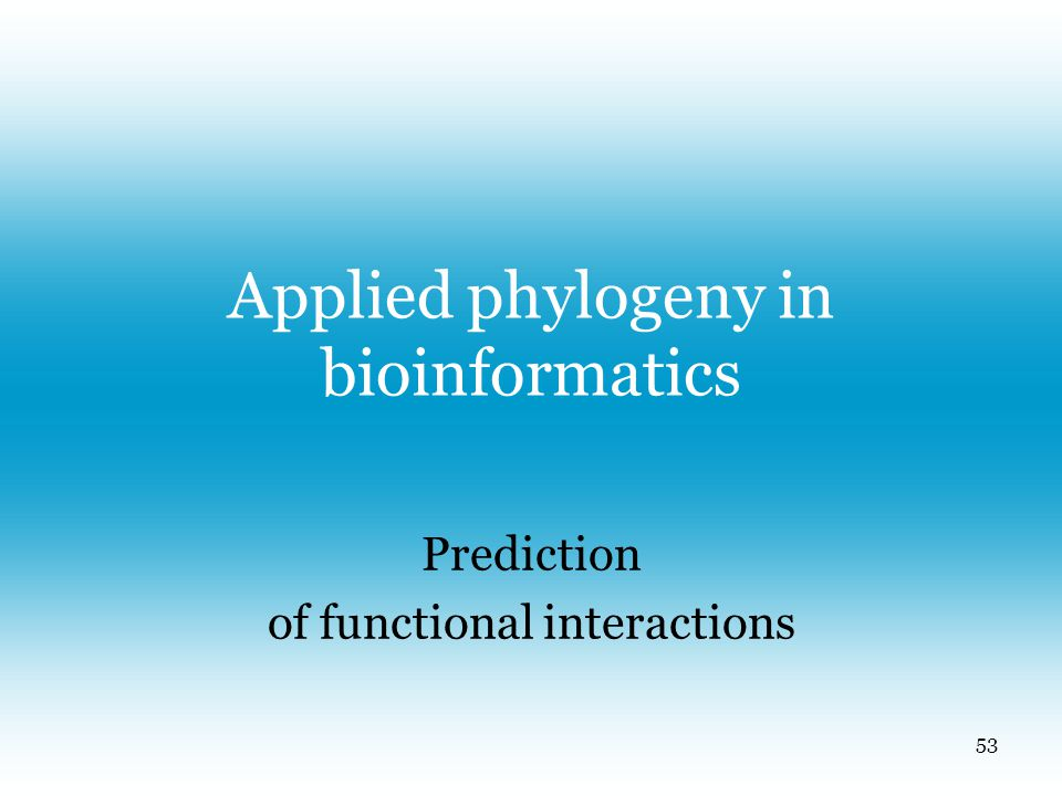 Applied phylogeny in bioinformatics Prediction of functional interactions 53