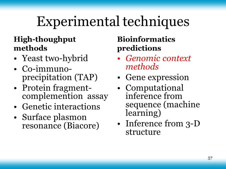 Experimental techniques High-thoughput methods Yeast two-hybrid Co-immuno- precipitation (TAP) Protein fragment- complemention assay Genetic interactions Surface plasmon resonance (Biacore) Bioinformatics predictions Genomic context methods Gene expression Computational inference from sequence (machine learning) Inference from 3-D structure 57