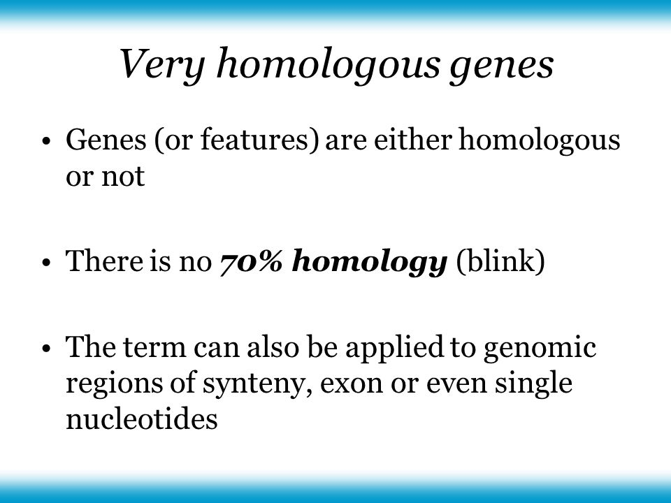 Very homologous genes Genes (or features) are either homologous or not There is no 70% homology (blink) The term can also be applied to genomic regions of synteny, exon or even single nucleotides
