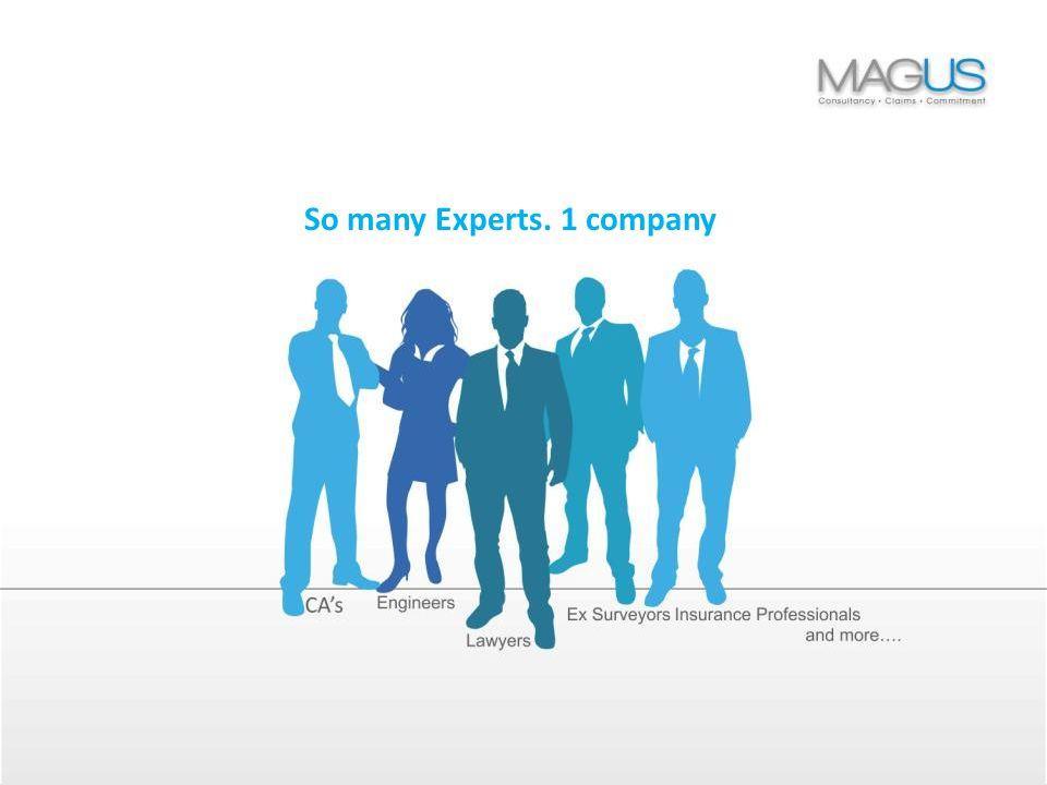 So many Experts. 1 company