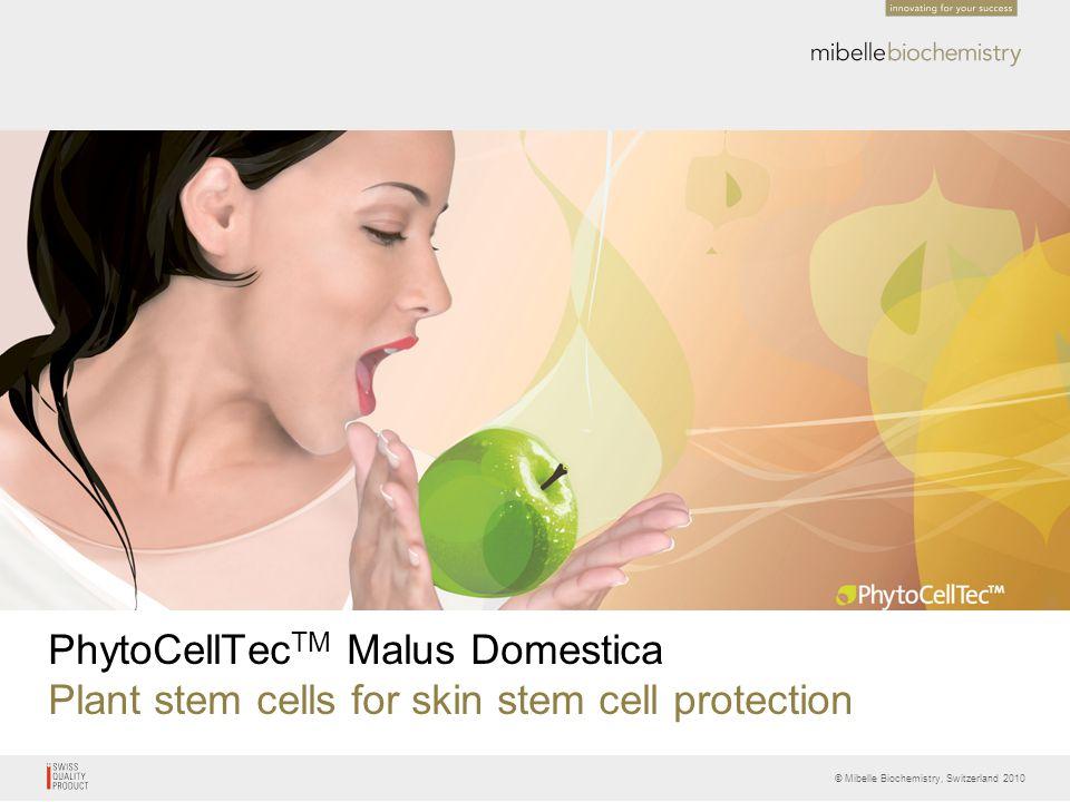 © Mibelle Biochemistry, Switzerland 2010 PhytoCellTec TM Malus Domestica Plant stem cells for skin stem cell protection