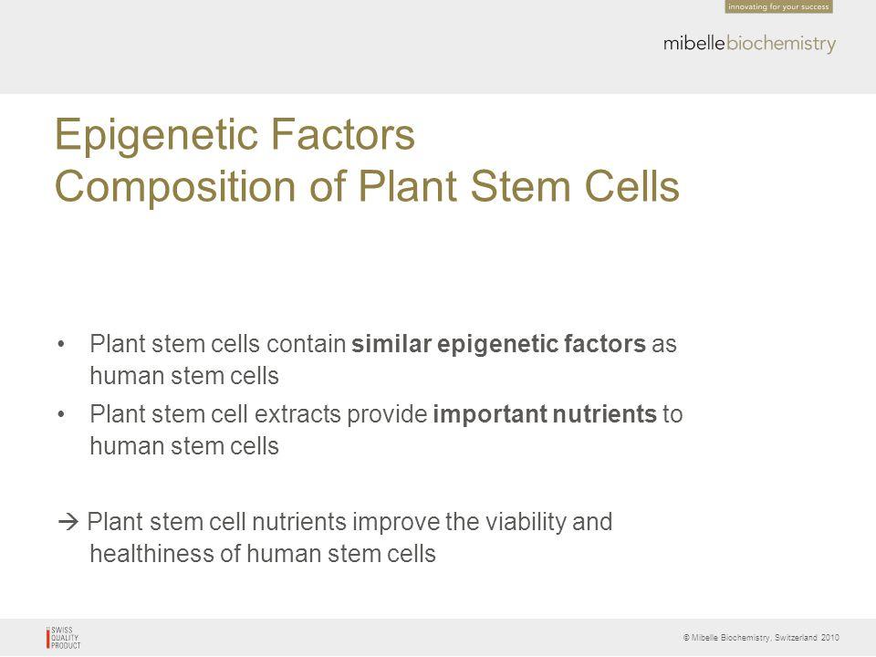 © Mibelle Biochemistry, Switzerland 2010 Epigenetic Factors Composition of Plant Stem Cells Plant stem cells contain similar epigenetic factors as hum