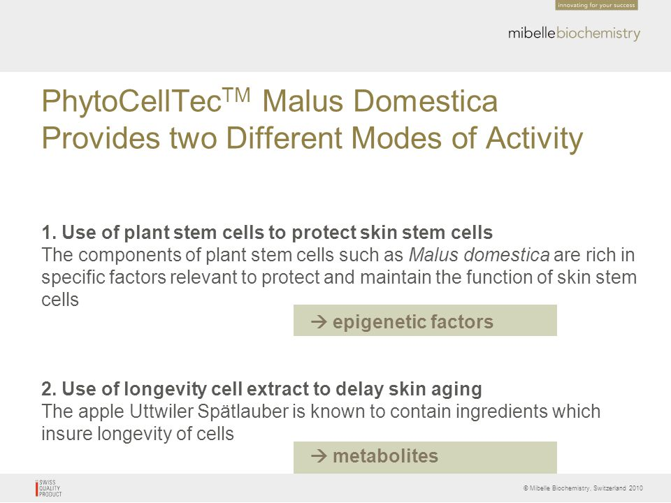 © Mibelle Biochemistry, Switzerland 2010 PhytoCellTec TM Malus Domestica Provides two Different Modes of Activity 1. Use of plant stem cells to protec