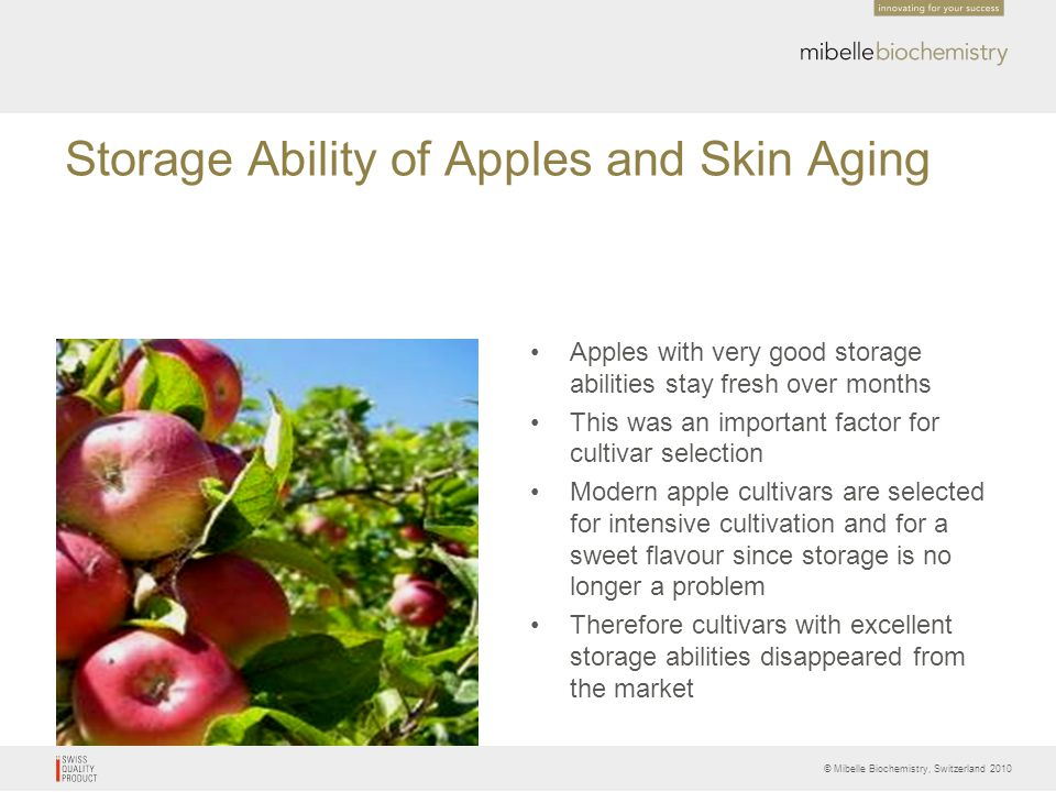 © Mibelle Biochemistry, Switzerland 2010 Storage Ability of Apples and Skin Aging Apples with very good storage abilities stay fresh over months This
