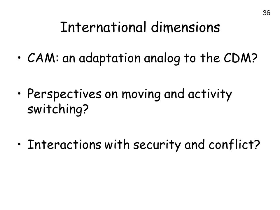 36 International dimensions CAM: an adaptation analog to the CDM.