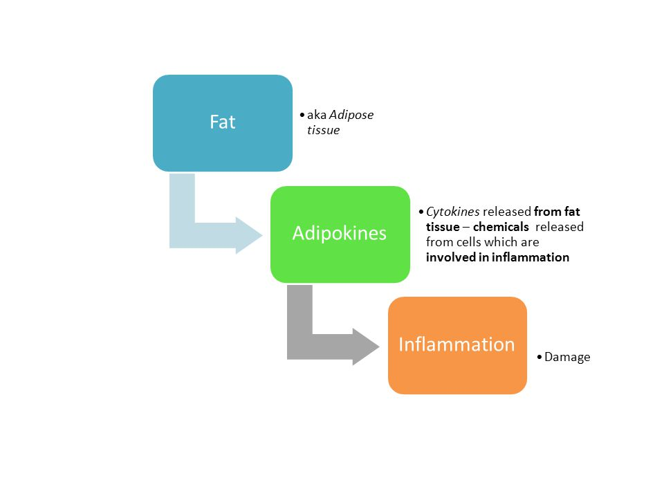 Fat aka Adipose tissue Adipokines Cytokines released from fat tissue – chemicals released from cells which are involved in inflammation Inflammation D