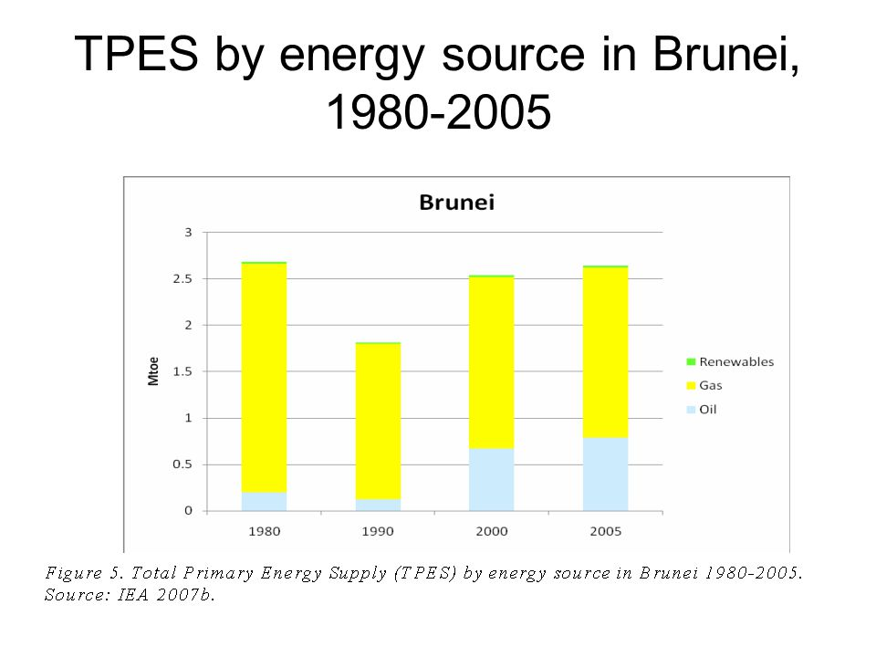 TPES by energy source in Brunei, 1980-2005