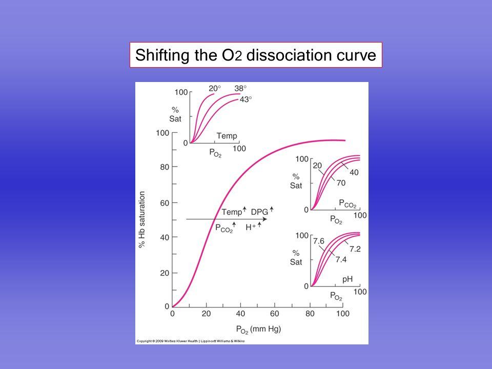 Shifting the O 2 dissociation curve