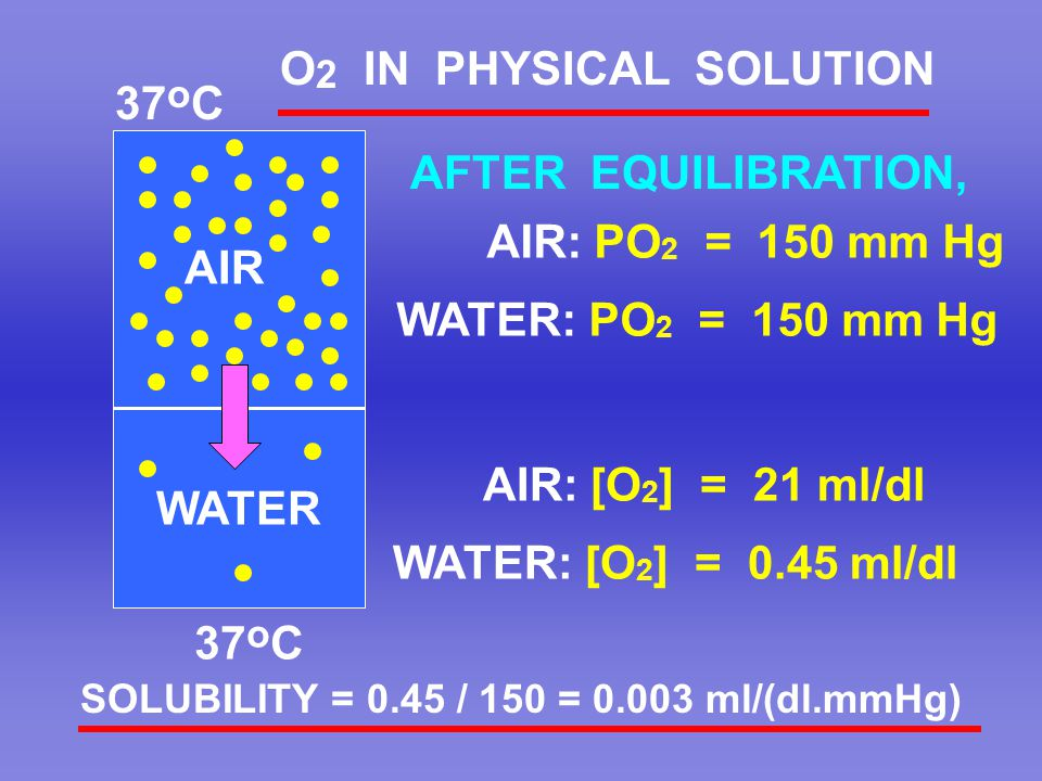 WATER O 2 IN PHYSICAL SOLUTION AIR: PO 2 = 150 mm Hg 37 o C AIR AFTER EQUILIBRATION, WATER: PO 2 = 150 mm Hg AIR: [O 2 ] = 21 ml/dl WATER: [O 2 ] = 0.