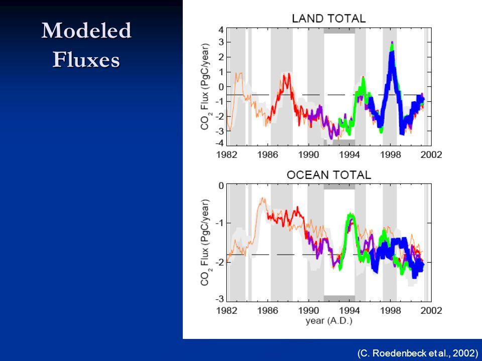 Modeled Fluxes (C. Roedenbeck et al., 2002)