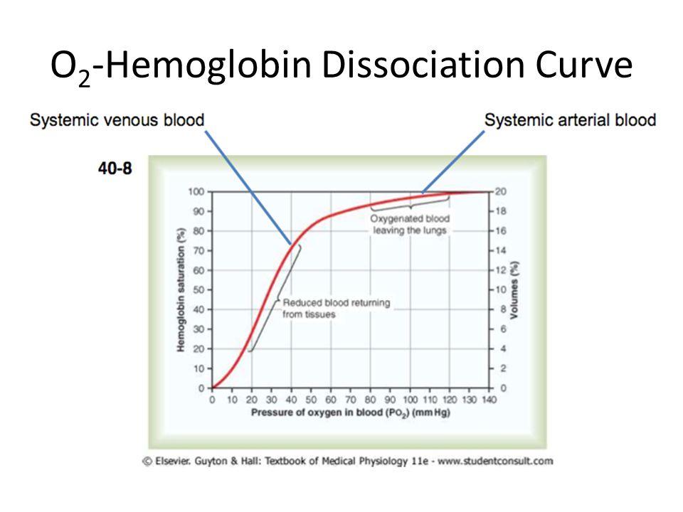 O 2 -Hemoglobin Dissociation Curve
