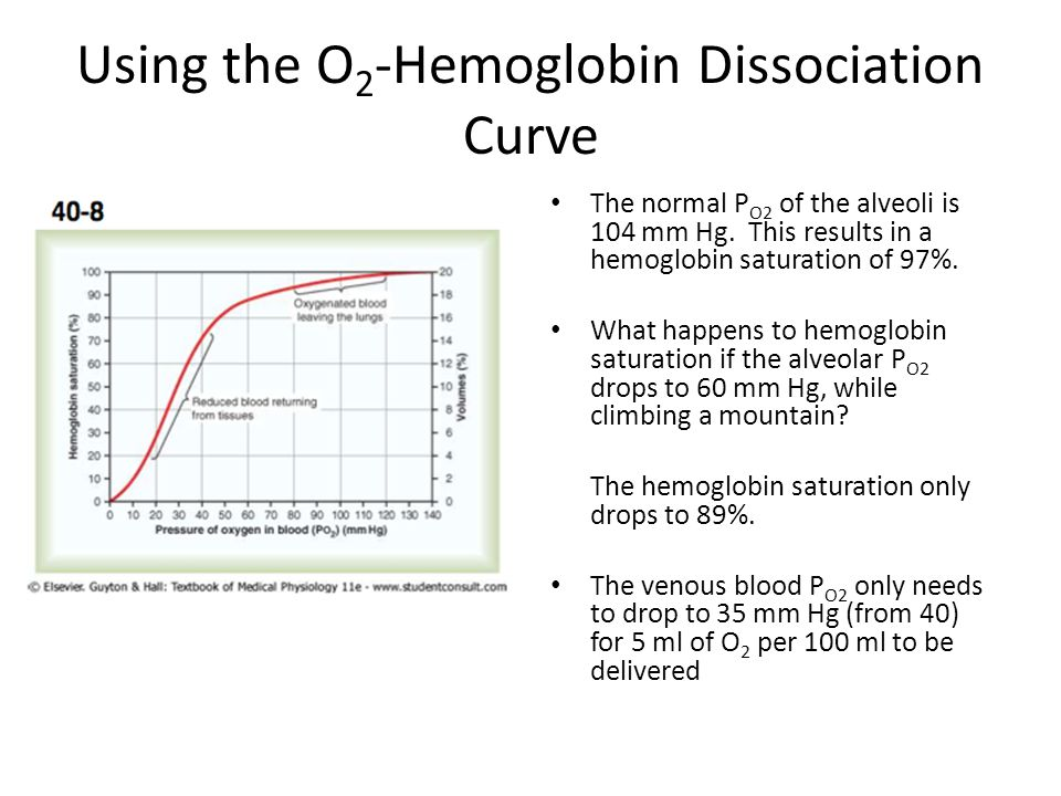 Using the O 2 -Hemoglobin Dissociation Curve The normal P O2 of the alveoli is 104 mm Hg.