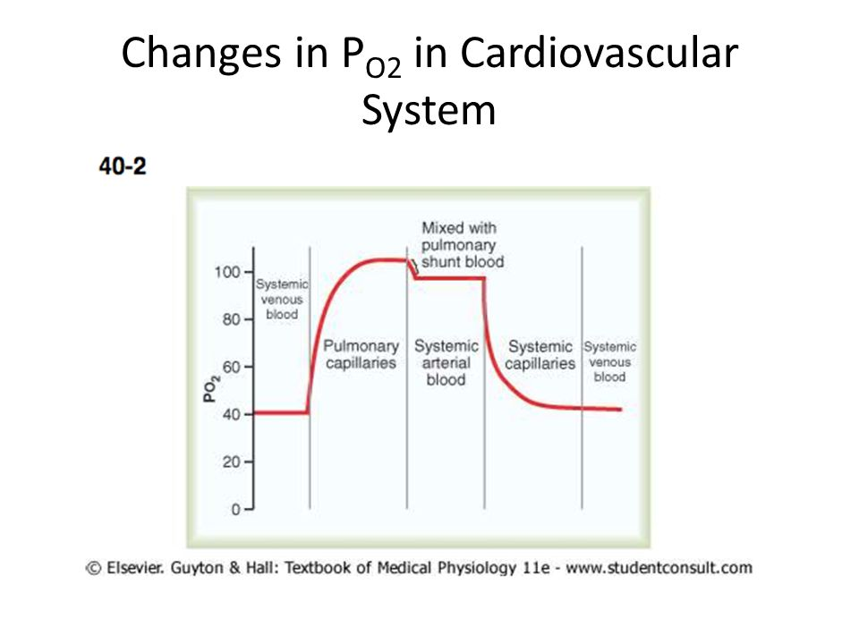 Changes in P O2 in Cardiovascular System
