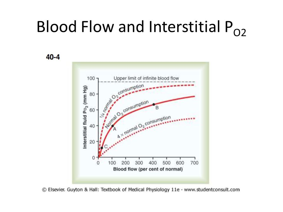 Blood Flow and Interstitial P O2