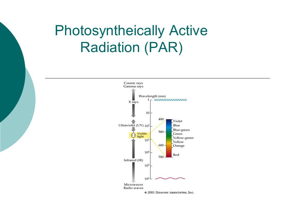 Photosyntheically Active Radiation (PAR)