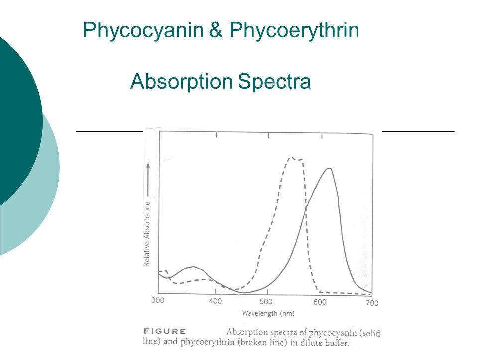 Phycocyanin & Phycoerythrin Absorption Spectra