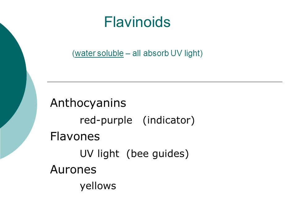 Flavinoids (water soluble – all absorb UV light) Anthocyanins red-purple (indicator) Flavones UV light (bee guides) Aurones yellows