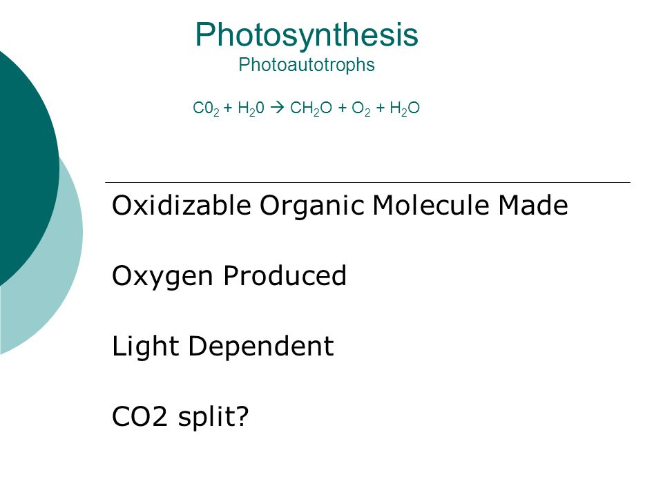 Photosynthesis Photoautotrophs C0 2 + H 2 0  CH 2 O + O 2 + H 2 O Oxidizable Organic Molecule Made Oxygen Produced Light Dependent CO2 split?