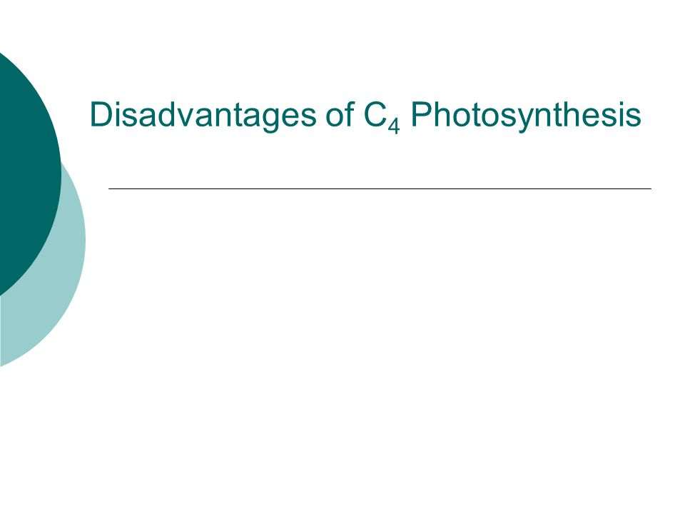Disadvantages of C 4 Photosynthesis