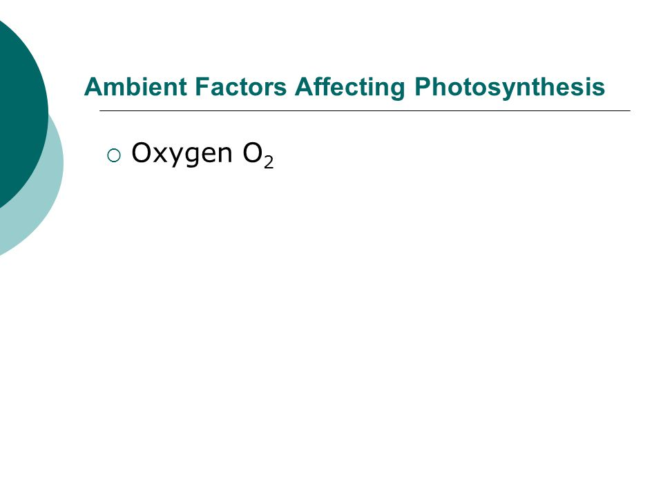Ambient Factors Affecting Photosynthesis  Oxygen O 2