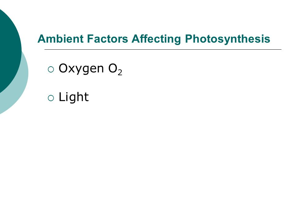 Ambient Factors Affecting Photosynthesis  Oxygen O 2  Light