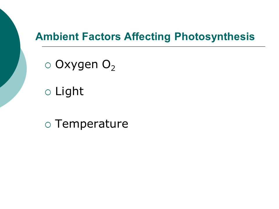 Ambient Factors Affecting Photosynthesis  Oxygen O 2  Light  Temperature