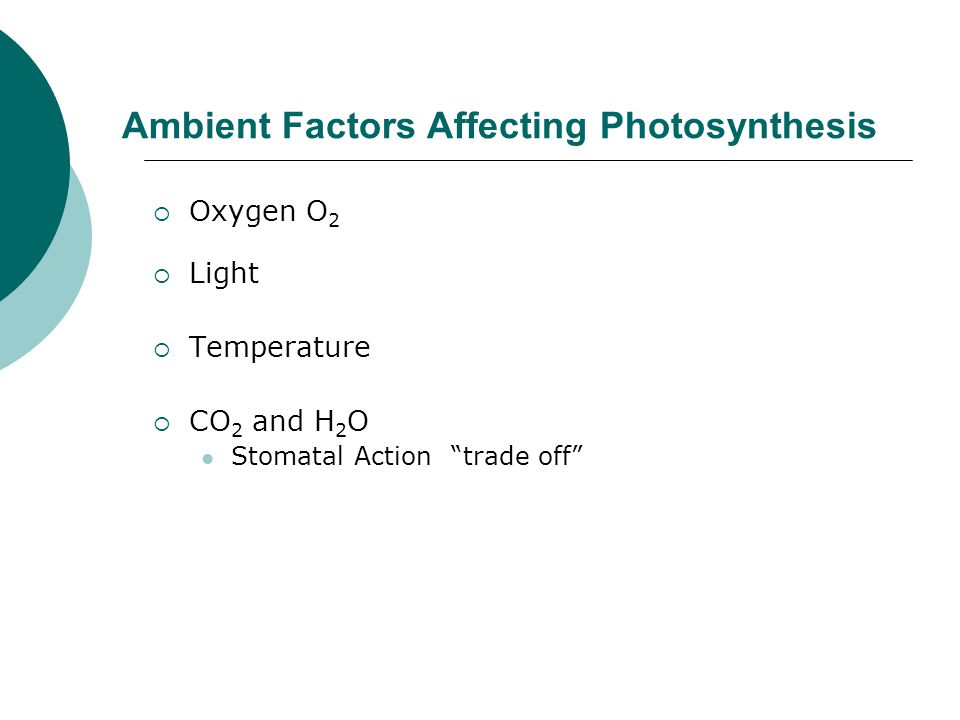 Ambient Factors Affecting Photosynthesis  Oxygen O 2  Light  Temperature  CO 2 and H 2 O Stomatal Action trade off