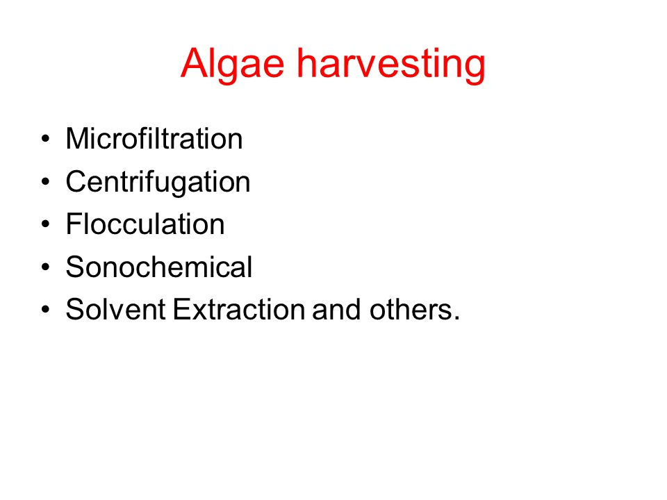 Algae harvesting Microfiltration Centrifugation Flocculation Sonochemical Solvent Extraction and others.