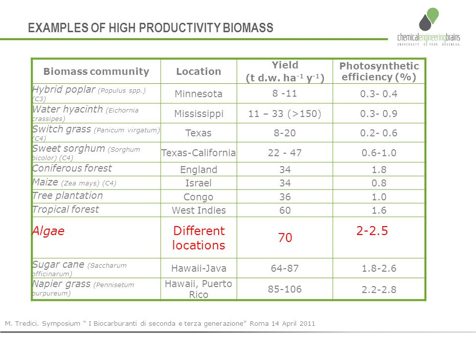 "EXAMPLES OF HIGH PRODUCTIVITY BIOMASS M. Tredici. Symposium "" I Biocarburanti di seconda e terza generazione"" Roma 14 April 2011 Biomass communityLoca"