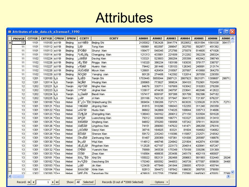 Metadata describing attributes