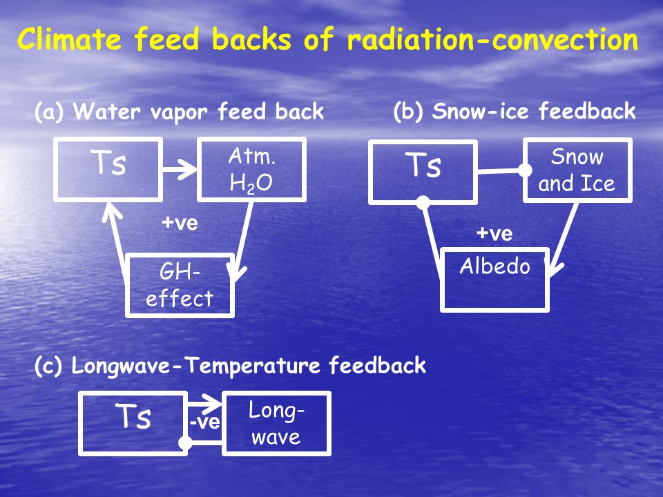 Climate feed backs of radiation-convection Ts Atm.