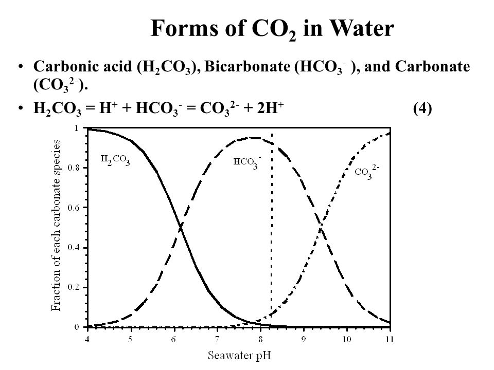 Forms of CO 2 in Water Carbonic acid (H 2 CO 3 ), Bicarbonate (HCO 3 - ), and Carbonate (CO 3 2- ). H 2 CO 3 = H + + HCO 3 - = CO 3 2- + 2H + (4)
