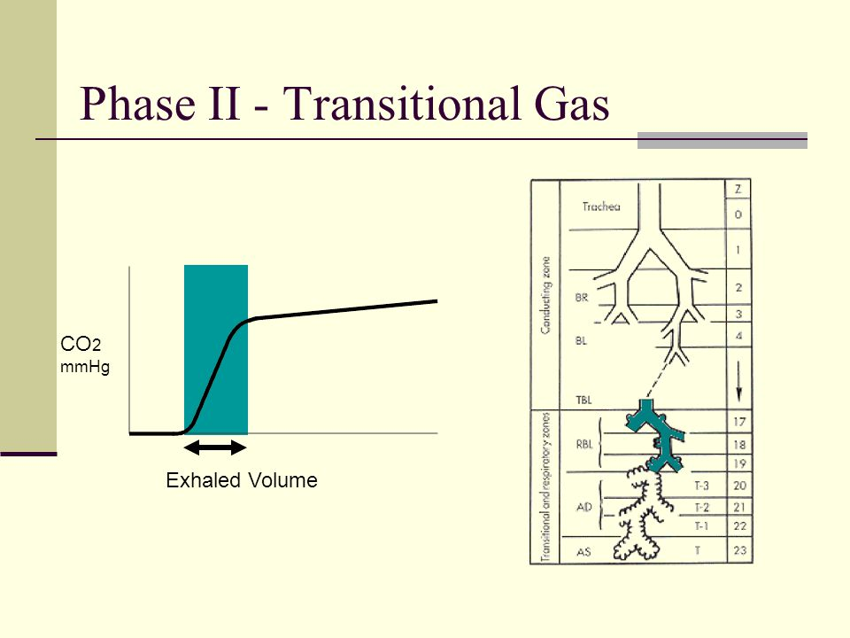 Phase II - Transitional Gas CO 2 mmHg Exhaled Volume