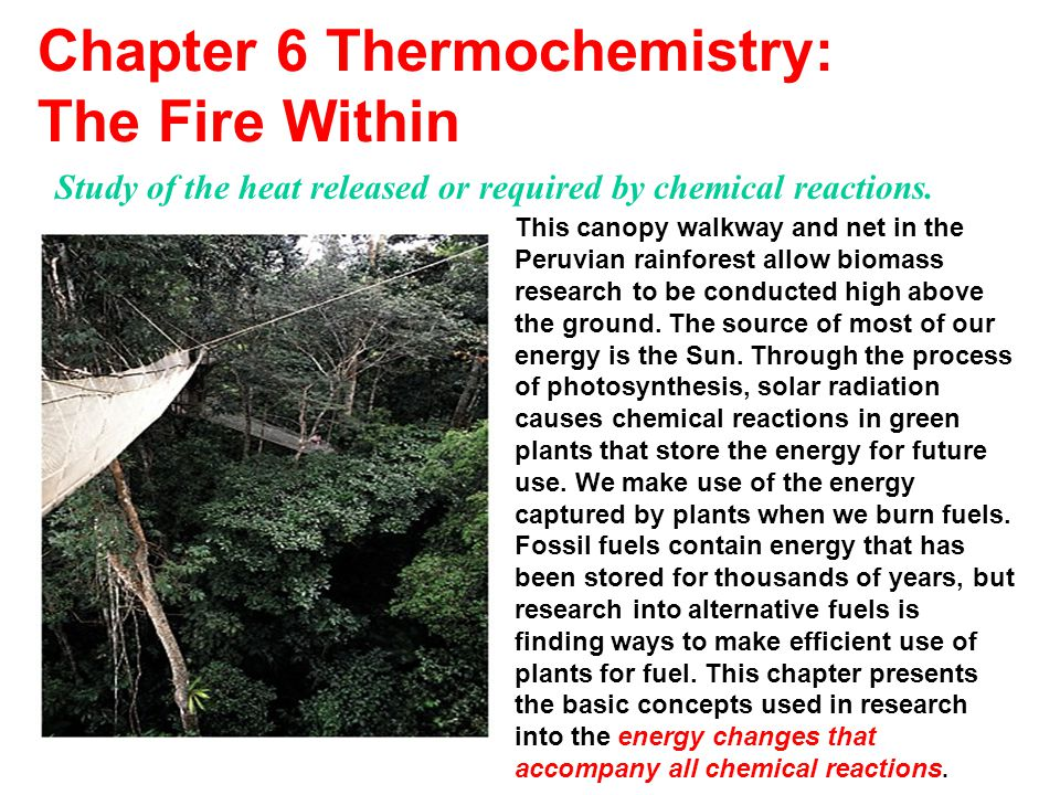 Chapter 6 Thermochemistry: The Fire Within This canopy walkway and net in the Peruvian rainforest allow biomass research to be conducted high above th