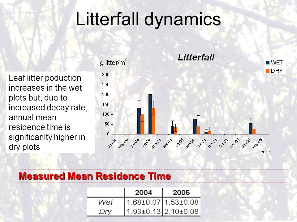 Litterfall dynamics Measured Mean Residence Time Leaf litter poduction increases in the wet plots but, due to increased decay rate, annual mean residence time is significanlty higher in dry plots