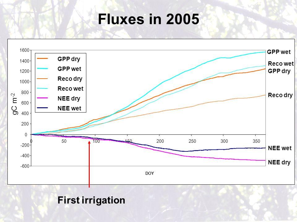 First irrigation -600 -400 -200 0 200 400 600 800 1000 1200 1400 1600 050100150200250300350 DOY gC m -2 GPP dry GPP wet Reco dry Reco wet NEE dry NEE wet GPP wet Reco wet GPP dry Reco dry NEE dry NEE wet Fluxes in 2005