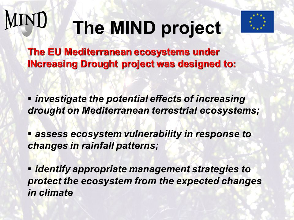 The MIND project The EU Mediterranean ecosystems under INcreasing Drought project was designed to:  investigate the potential effects of increasing drought on Mediterranean terrestrial ecosystems;  assess ecosystem vulnerability in response to changes in rainfall patterns;  identify appropriate management strategies to protect the ecosystem from the expected changes in climate