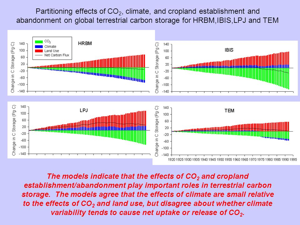 Partitioning effects of CO 2, climate, and cropland establishment and abandonment on global terrestrial carbon storage for HRBM,IBIS,LPJ and TEM The models indicate that the effects of CO 2 and cropland establishment/abandonment play important roles in terrestrial carbon storage.