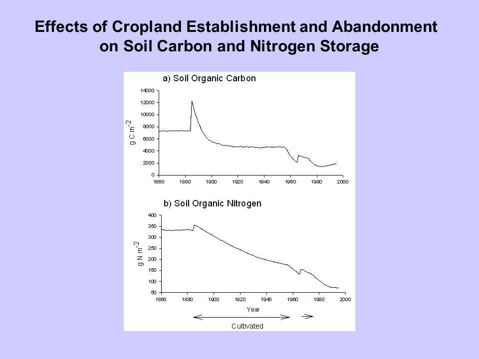 Effects of Cropland Establishment and Abandonment on Soil Carbon and Nitrogen Storage