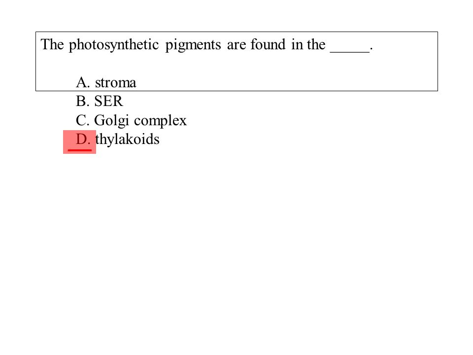 The photosynthetic pigments are found in the _____. A. stroma B. SER C. Golgi complex D. thylakoids ___
