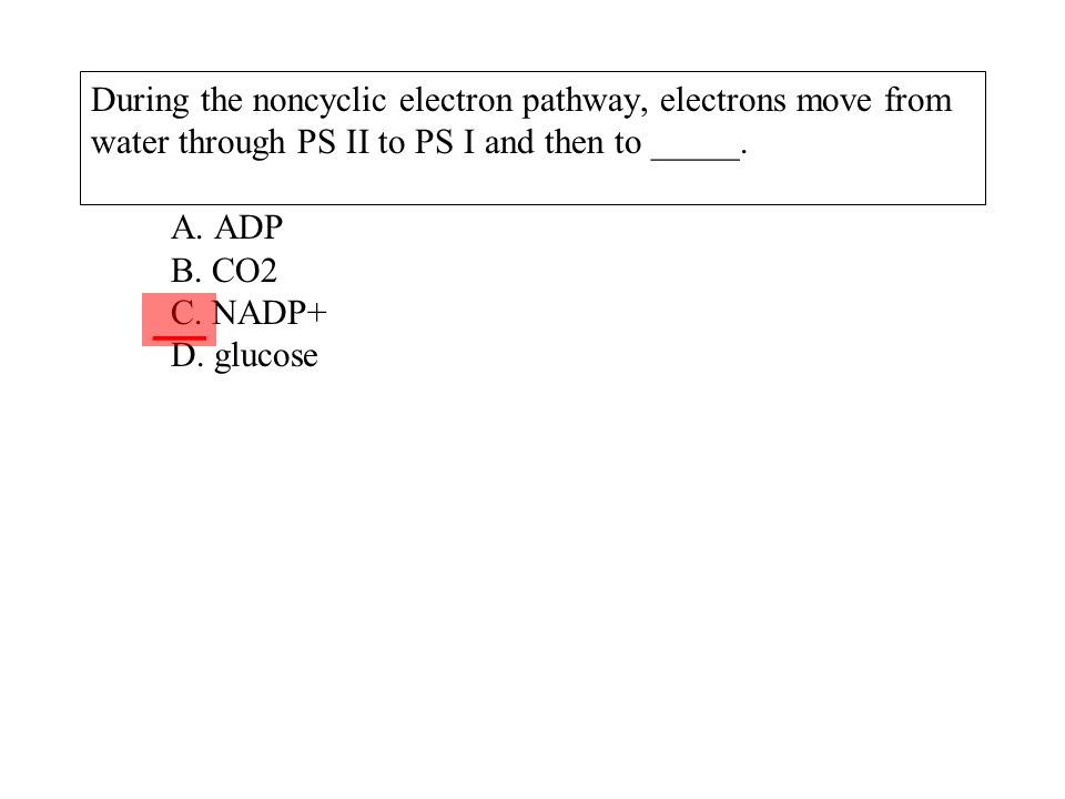 During the noncyclic electron pathway, electrons move from water through PS II to PS I and then to _____. A. ADP B. CO2 C. NADP+ D. glucose ___