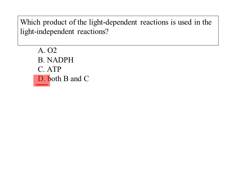 Which product of the light-dependent reactions is used in the light-independent reactions? A. O2 B. NADPH C. ATP D. both B and C ___