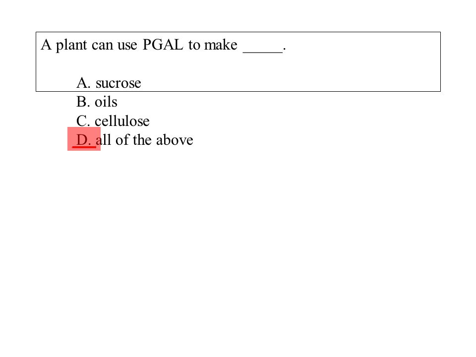 A plant can use PGAL to make _____. A. sucrose B. oils C. cellulose D. all of the above ___