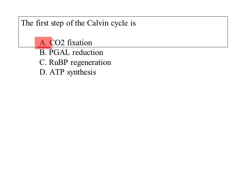 The first step of the Calvin cycle is A. CO2 fixation B. PGAL reduction C. RuBP regeneration D. ATP synthesis ___