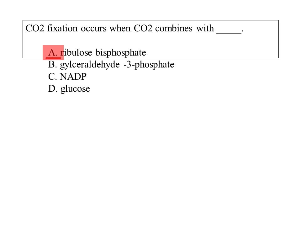 CO2 fixation occurs when CO2 combines with _____. A. ribulose bisphosphate B. gylceraldehyde -3-phosphate C. NADP D. glucose ___