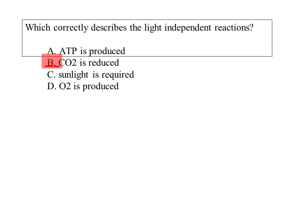 Which correctly describes the light independent reactions? A. ATP is produced B. CO2 is reduced C. sunlight is required D. O2 is produced ___