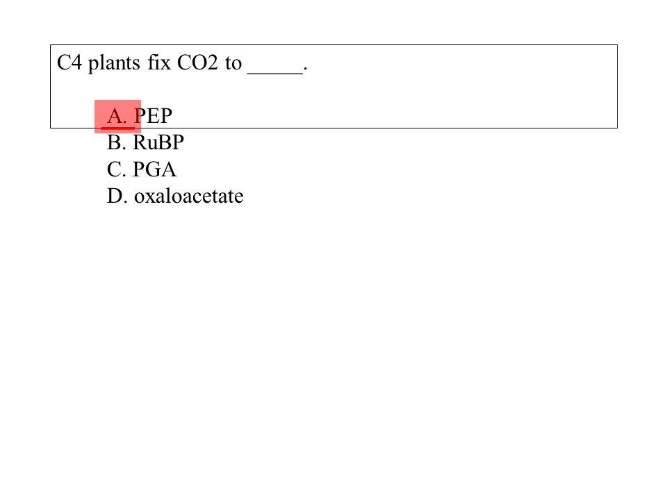 C4 plants fix CO2 to _____. A. PEP B. RuBP C. PGA D. oxaloacetate ___