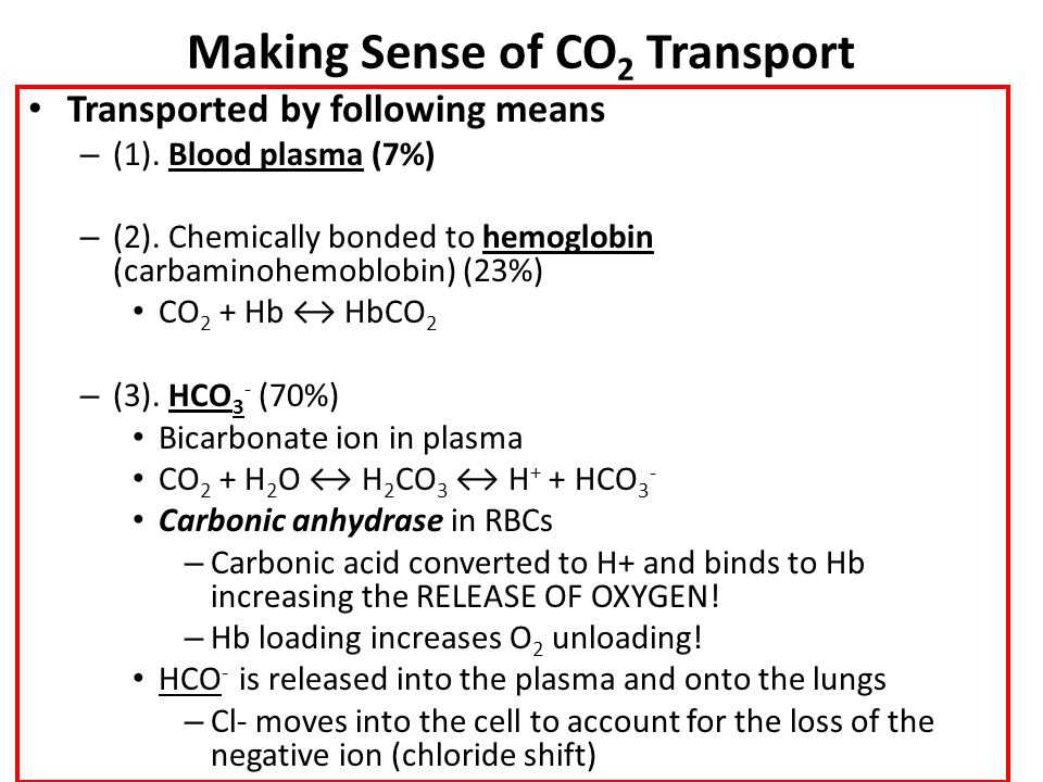 Making Sense of CO 2 Transport Transported by following means – (1). Blood plasma (7%) – (2). Chemically bonded to hemoglobin (carbaminohemoblobin) (2